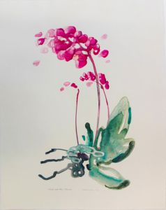 Tiina Vainio: From the Serie Orchids and Other Flowers