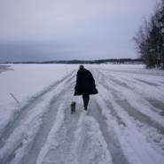 Taru Innanen - Jäätie